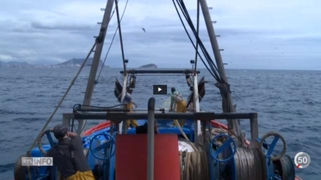 Le plastique s'accumule en Méditerranée, si bien que certains pêcheurs ont décidé d'agir comme ils le peuvent pour limiter la pollution.